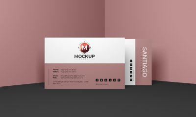 Free-Pro-Business-Card-Mockup-PSD-For-Presentation-2018