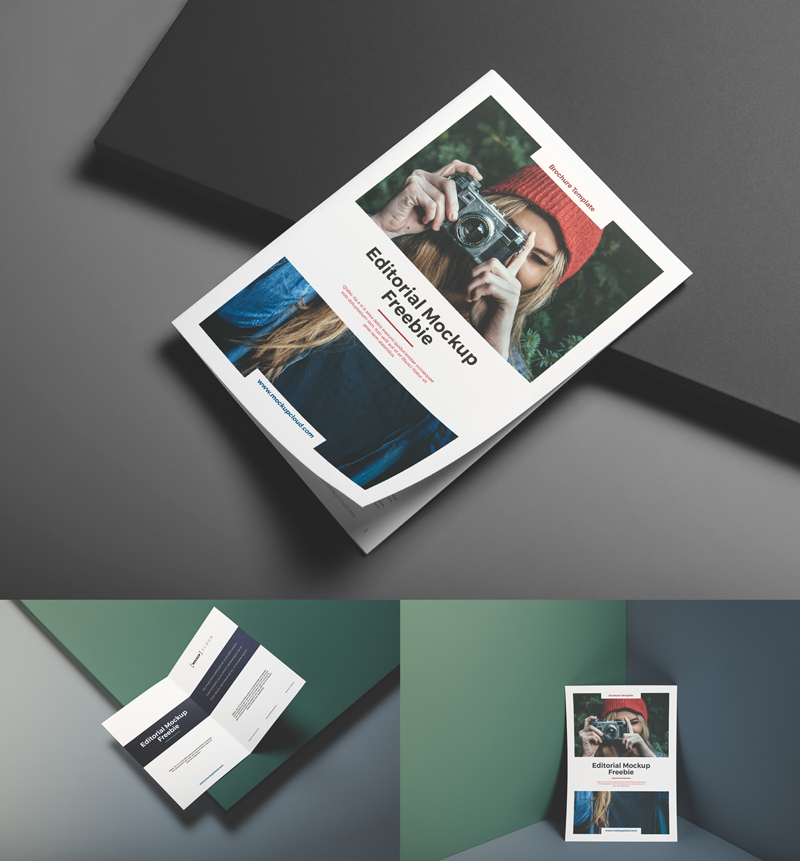Free-Editorial-Branding-Mockup-5-PSD-Templates