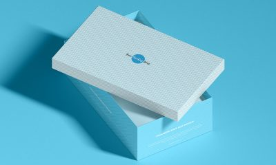 Free-Fabulous-Shoe-Box-Packaging-Mockup-Design