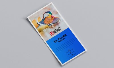 Free-Curved-Dl-Flyer-Mockup-Design