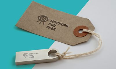 Free-Label-&-USB-Logo-Branding-Mockup-2018-700