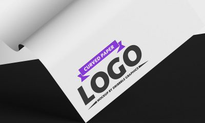 Free-Wavy-Paper-Logo-Mockup-Design