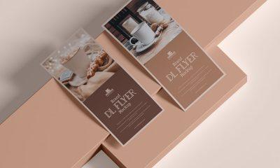 Free-Modern-Branding-Dl-Flyer-Mockup-Design